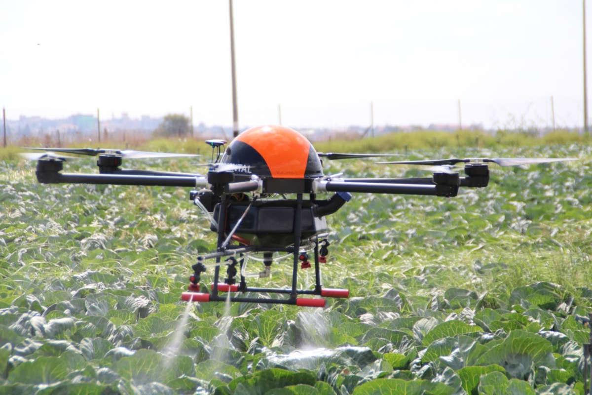 Zoom sur le marché des drones agricoles